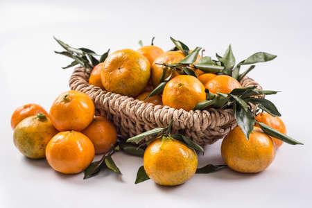 tangerine: Montenegrina tangerine,