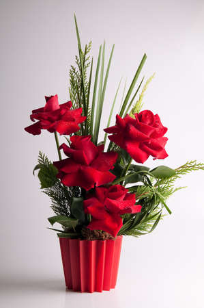 floriculture: Red roses in flowerpot Stock Photo