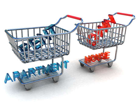 Rent apartment or own home in a basket from a supermarket photo