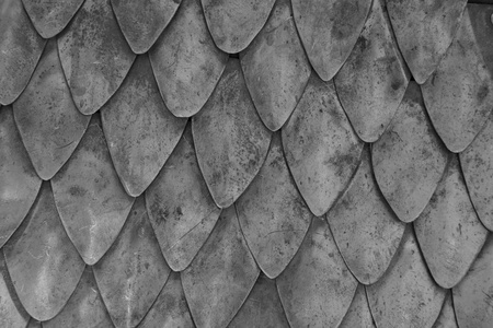detailed  macro close up scale metal armor background Stock Photo - 10543261