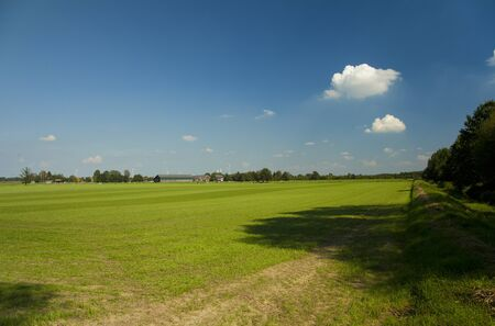 green field with blue sky and a vilage on the background Stock Photo