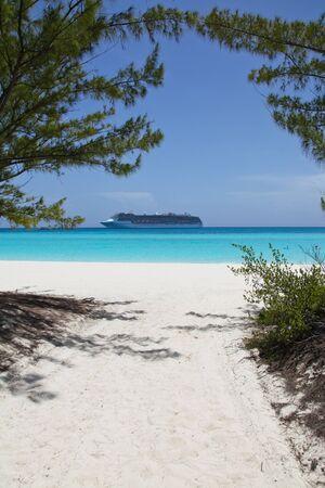 cruise ship anchored near a white sand beach on blue water