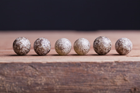 house sparrow egg isolated on wood background
