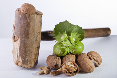 walnuts cracked on white isolated background with wood hammer