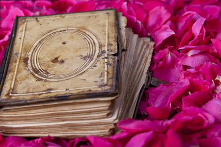 ancient book with marks on pink rose petal background Stock Photo