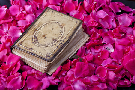 old closed book on rose petal bed background