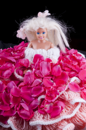 barbie doll toy with rose dress isolated Stock Photo