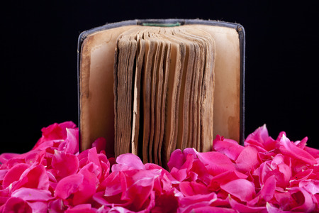 old ancient book on rose petal isolated on black background