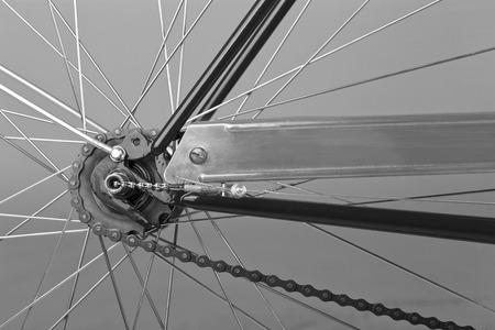 back wheel studio shot of bicycle