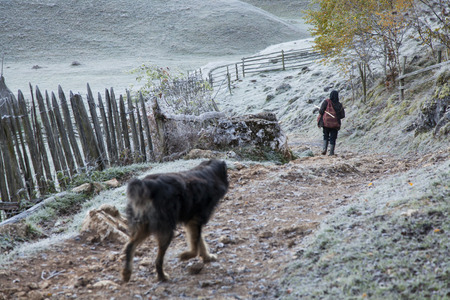 woman and dog on villafge rural path in mountains with frozen grass
