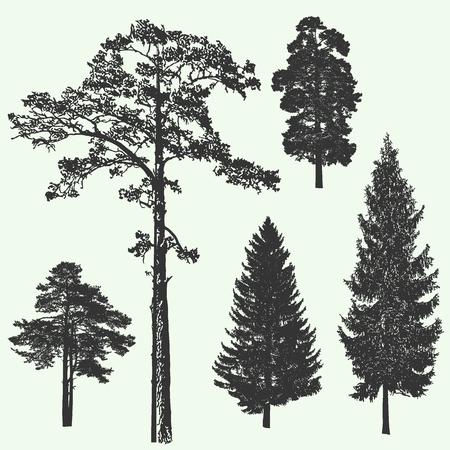 arbres silhouette: Vintage arbre de forêt vecteur conception de silhouette illustration