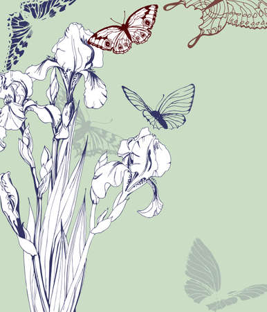 Vintage Greeting card with blooming irises and with butterflies. With place for your text. Use for Boarding Pass, birthday card, invitations, thank you card. Vector illustration.