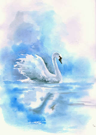 Watercolor drawing of a Swan on the river. Vector illustration