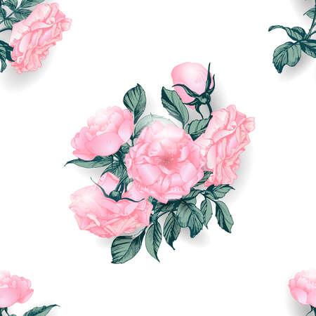 Seamless background with roses. Vector illustration Illustration