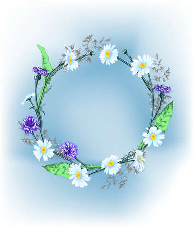 Summer background with a wreath of wild flowers, daisies, cornflowers, grass, with butterflies. Template Vector.