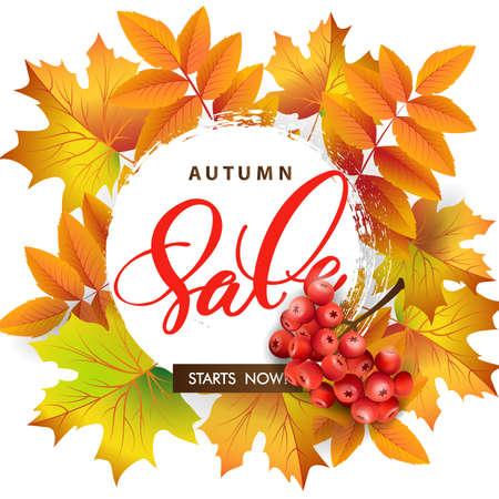秋の紅葉とナナカマドの果実販売バナー。テンプレート ベクトル。