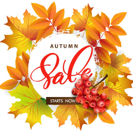 Sales banner with autumn leaves and rowan berries. Template Vector.