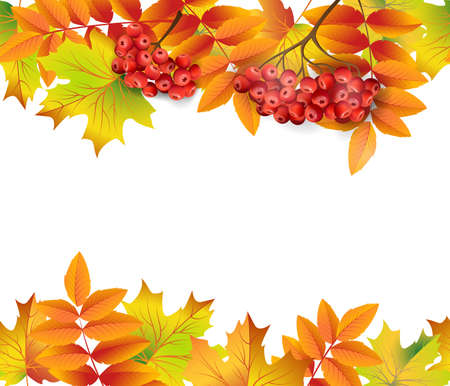 Seamless border with autumn leaves and rowan berries. Template Vector.