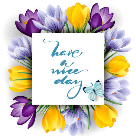 day flowering: Have a nice day. Spring background with flowering crocuses.Template vector.
