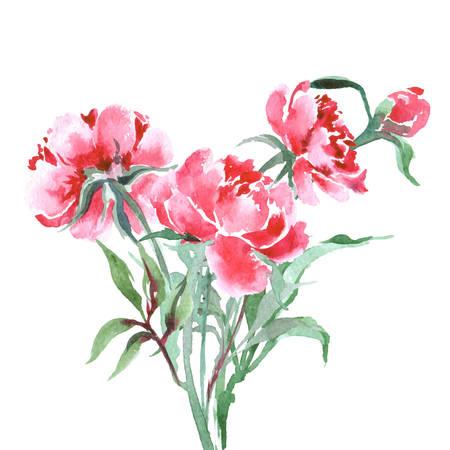 Boeket van pioenen, aquarel, kan worden gebruikt als wenskaart, uitnodigingskaart voor huwelijk, verjaardag en andere vakantie en zomer achtergrond. Vector illustratie. Stock Illustratie