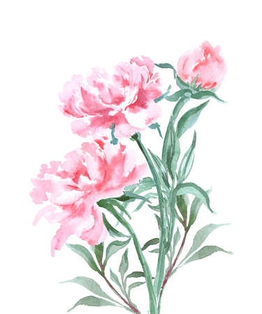 holiday invitation: Bouquet of peonies, watercolor, can be used as greeting card, invitation card for wedding, birthday and other holiday and summer background. Vector illustration.