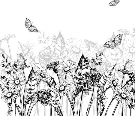 Summer background with Blooming wild flowers, daisies, cornflowers, grass, with butterflies. Vector.