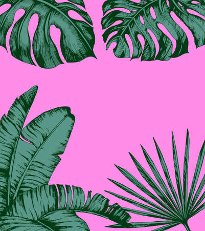 ピンクの背景にトロピカルヤシの葉。最小限の自然の夏のコンセプト。平らな横たわる。トレンディな夏のベクトルデザイン