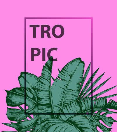 ピンクの背景にトロピカルヤシの葉。最小限の自然の夏のコンセプト。平らな横たわる。トレンディな夏の熱帯葉ベクトルデザイン  イラスト・ベクター素材