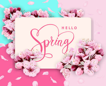Hello spring vector banner design with flowers Cherry and frame. Spring sale with Cherry blossoms background. Çizim
