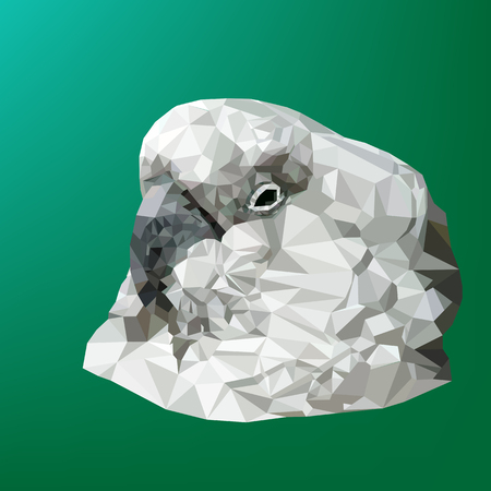 Vector illustration of low poly parrot. Geometric polygonal parrot silhouette. Parrot triangles low poly vector.
