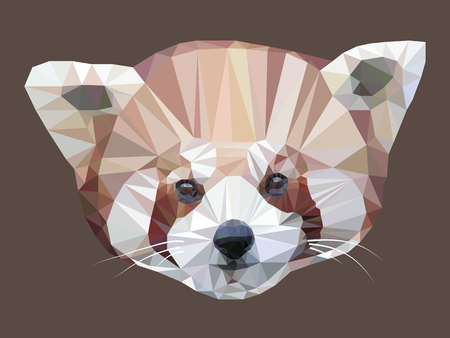 Vector illustration of low poly panda. Geometric polygonal red panda portrait. Red panda triangles low poly vector. Illustration