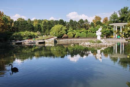 pond in a park Arboretum city of Sochi, Russia