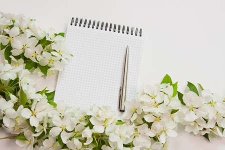 beautiful designer background with the sprigs of flowering apple-tree with a notebook and pen photo