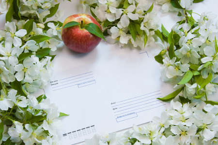 beautiful designer background with the sprigs of flowering apple-tree with an envelope and red apple Stock Photo