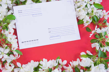 beautiful designer background with the sprigs of flowering apple-tree with an envelope photo