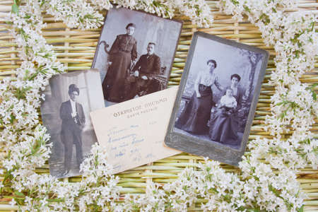 designer background from the twigs of willow, flowers  of lilac and old photos