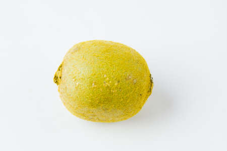 fruit of kiwi on a white background Stock Photo - 17278982