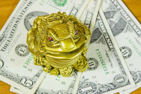 accumulations: a souvenir is a frog and dollars
