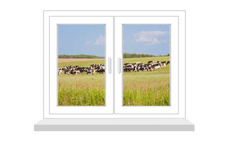 flowed: closed window with a kind on the herd of cows on a white background, it is isolated, raster illustration