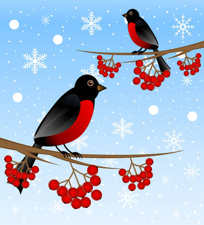 branch tree with berry wild ash and bird bullfinch, vector illustration Vector