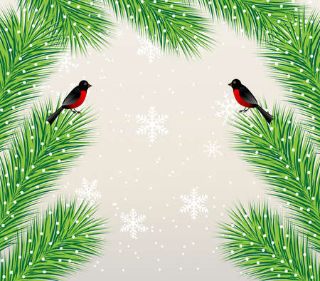 new-year background with spruce branch and bullfinch, vector illustration Vector