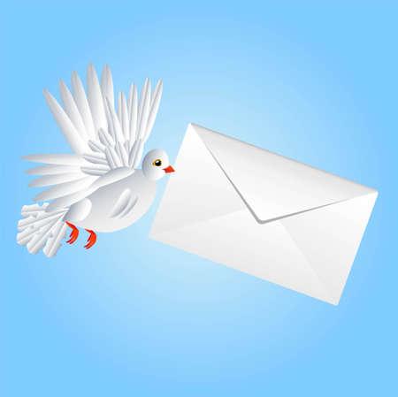 carries: uccello un piccione bianco porta una busta bianca in un becco, illustrazione vettoriale