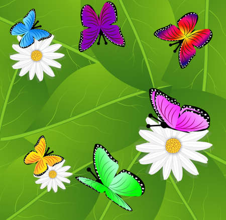 spot the difference: background  with flowers and butterflies, vector illustration