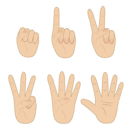 set hand, showing different number on white background, vector illustration Vector