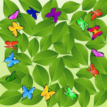spot the difference: background  with green leaves and butterflies,  vector  illustration
