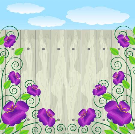 violet flowers on a  wooden fence Vector