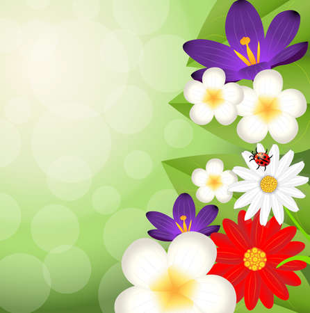 background for a design with beautiful flowers, vector illustration Vector