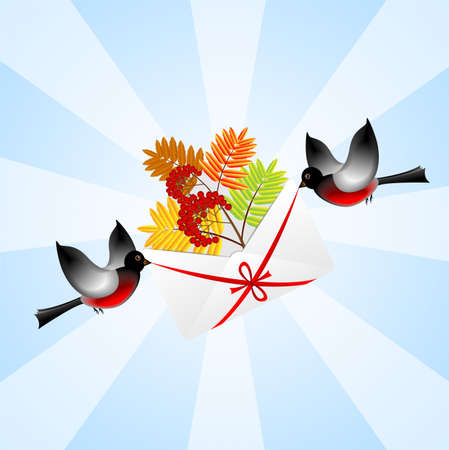 bullfinchs carry an envelope with the branch of wild ash,  vector  illustration Vector