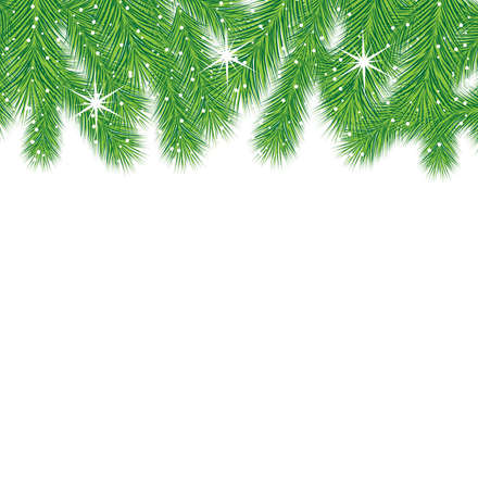 pine needle: festive christmas background with green branches, vector  illustration