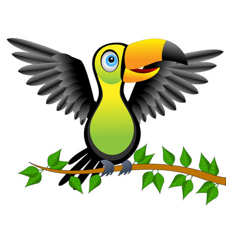 gaze: Toucan bird sitting on vetch,vector illustration